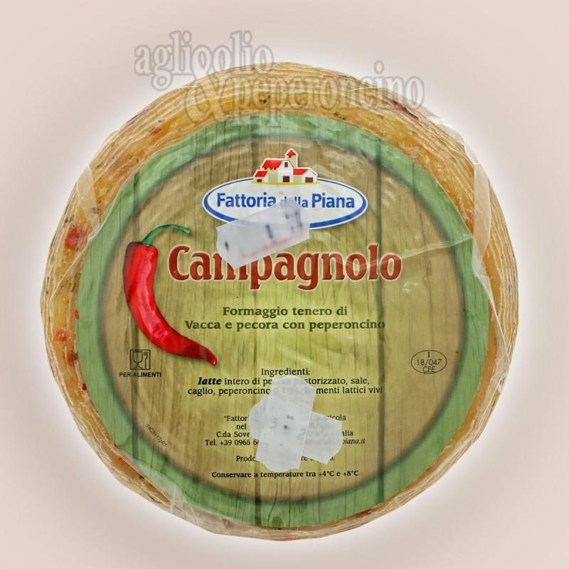 Campagnolo formaggio misto al peperoncino - Fattoria della Piana